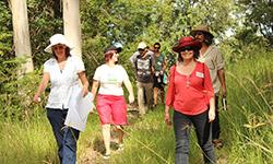 Visitors at the open day - Narara Ecovillage