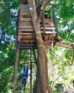 Roam and Play In Our Backyards Session: From big trampolines to curious chickens, sweet blackberries and lofty tree houses @ Narara Ecovillage